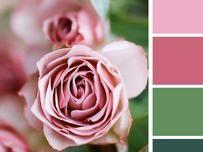 """В """"Перфектни комбинации от цветове за обзавеждане на дома"""" ви представихме няколко подходящи съчетания за уютенинтериорна дома. Сега ви предлагаместилникомбинации при подбирането натоалета. Знаем колко е трудно да изберем не само какво ще облечем, а и какще съчетаемцветовете по себе си."""