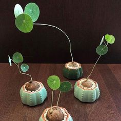 80 DIY Plant Stand Ideas To Fill Your Room With Greenery These trendy HomeDecor ideas would gain you amazing compliments. Check out our gallery for more ideas these are trendy this year. Foliage Plants, Potted Plants, Indoor Plants, Cool Plants, Green Plants, Plantas Bonsai, Diy Plant Stand, Plant Stands, Pot Plante