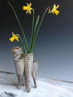 daffy-trio.jpg  Catherine White