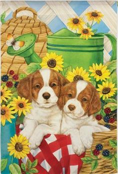 "Summer Pups Decorative 13"" x 18"" High Quality Garden Banner Flag by House-Impressions. $3.59. Weather resistant. Easy to use and simple to hang flags. Double-sided, read from both sides. Soft, high-quality nylon fabric. Make an impression! These beautiful, brightly colored, creatively designed flags are the perfect way to greet someone to your home or garden. Made with tight-stitching and high quality material to last and last. Our applique regular size flags are extra-durable, ..."
