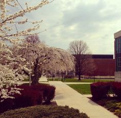 """""""Do not go where the path may lead, go instead where there is no path and leave a trail."""" - Ralph Waldo Emerson. #kutztown2013"""