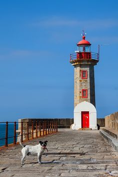 Felgueiras lighthouse in Foz do Douro - Porto Portugal Places Around The World, Around The Worlds, Beautiful World, Beautiful Places, Candle On The Water, Beacon Of Light, Water Tower, The Good Place, Places To Go