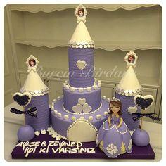 Bu kez Ayşe ve Zeynep için  #princesssofia #cake #burcinbirdane #castlecake