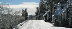 Acadia in the snowy winter is breathtaking-- check out their winter activities!