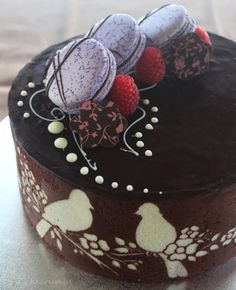 Chocolate and Raspberry Mousse Entremet - there's a lot going on, just like the macarons on top and the chocolate I Love Chocolate, Chocolate Hazelnut, Chocolate Cake, French Desserts, Fun Desserts, Health Desserts, Entremet Recipe, Cupcake Cakes, Cupcakes