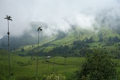 Vale de Cocora, Colômbia Wind Turbine, Europe, Mountains, Places, Nature, Travel, Road Trip Map, Countries Of The World, Viajes