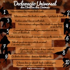 Você conhece a Declaração Universal dos Direitos dos Animais?  Acompanhe a…