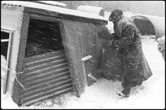 Ivor Brock feeding sheep in a blizzard by James Ravilious © Beaford Arts