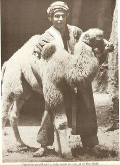 Rudolph Valentino with a very cute camel.