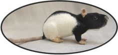 Needle Felted Rat OOAK Needle Felt by NoahsFeltedNovelties on Etsy, $90.00