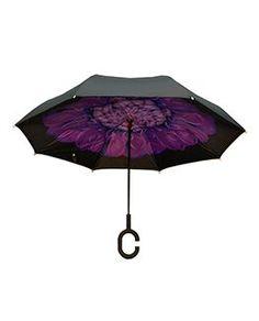 Clifton Pink /& Black Spots Dot Folding Umbrella Automatic Open Compact Brolly