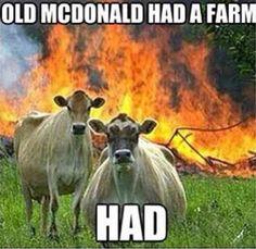 He had a farm