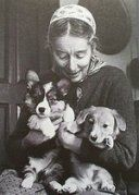 "Tasha Tudor: ""My very first corgi was bought by my son Tom for ten guineas from a Reverend Mr. Jones, a vicar in Pembrokeshire, who shipped him over in a tea chest. It was love at first sight and I was determined I had to have more. I've had up to thirteen or fourteen at one time, which causes a lot of commotion underfoot, especially when people come to call."""