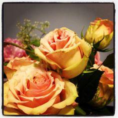 pin by sylvie armand on rosa rosa rosam rosae rosae rosa pinterest. Black Bedroom Furniture Sets. Home Design Ideas