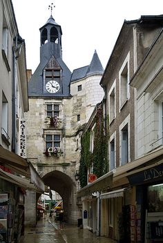 Amboise | a small city in central France, located in the area of the Loire Valley