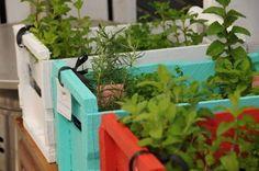 Huerta y color Balcony Garden, Herb Garden, Outside Living, Compost, Garden Inspiration, Ideas Para, Pergola, Sweet Home, Herbs