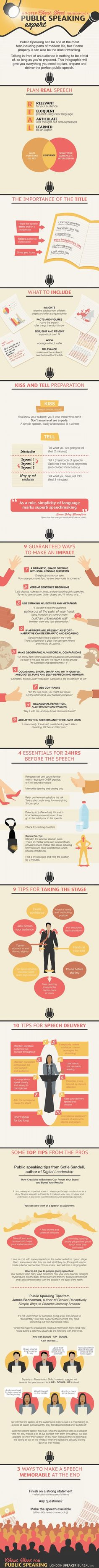 Career Management - Nine Steps for Public Speaking Like a Pro [Infographic] : MarketingProfs Article