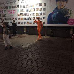夜ロン(夜の渋谷で見つけたコハロン) Kohalon in Shibuya at night #面長 #全身タイツ #長身 #渋谷 #ハチ公 #shibuya
