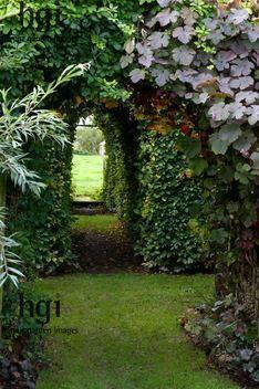 Secret garden arches
