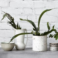 Beautiful handmade wing vase, it can be display with any kind of flowers or simply as a decorative vase #plants #wingvase #jug #homeware