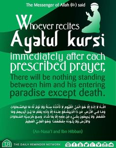 #AyatulKursi #Jannah How many of us do this simple act? Many of us overlook this Sunnah after Fardh Salah by getting busy with other acts like making Dua, talking to each other or even simply walking off. It takes less than 30 seconds to recite this. If you don't know Ayatul Kursi, then please go here to learn it by heart and with understanding - https://youtu.be/zsq0vf1MAng May Allah grant us all Jannah Al-Firdaws. REFLECT | ACT | SHARE