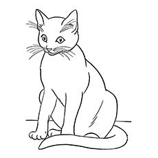0dff81685f8914ebdce838f155da8ee2--colouring-in-coloring-pages