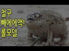 [티비플] 철구 빼에에엑! 원조 롤모델