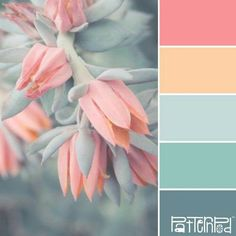 This is a perfect combination of warm shade of coral-red and cold shade of turquoise. These colours balance each other, giving the palette neutral warmth. Design Seeds, Coral Colour Palette, Spring Color Palette, Pastel Palette, Duck Egg Blue Colour Palette, Vintage Colour Palette, Color Schemes Colour Palettes, Nature Color Palette, Interior Color Schemes