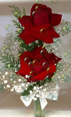 Holiday Party Discover Flowers are God & Way of Smiling Beautiful Rose Flowers Flowers Gif Beautiful Gif Pretty Roses Love Rose Beautiful Flowers Friend Birthday Happy Birthday Gif Bonito
