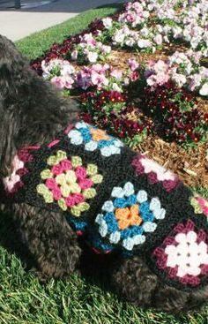 Dog's Crochet Granny Square Sweater Free Pattern from Red Heart Yarns