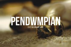 14 Brilliant Welsh Words Everyone Needs To Start Using Unusual Words, Rare Words, Big Words, Unique Words, Great Words, Beautiful Words, Beautiful Definitions, Word Up, Word Of The Day