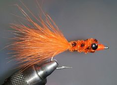 Surf perch - Tides & Tailouts Fly Fishing Co.