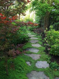 Garden Path Design Pictures Remodel
