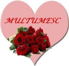 multumesc1 Usui, True Words, Favorite Quotes, Happy Birthday, Gratitude, Respect, Heart, Frame, Decor