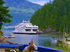 Here Comes Our Ride! - Bowen Island, British Columbia