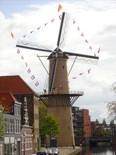 Schiedam, De Kameel