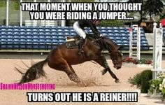 Horse memes - Horses Funny - Funny Horse Meme - - Horse memes The post Horse memes appeared first on Gag Dad. Funny Horse Memes, Funny Horse Pictures, Funny Horses, Cute Horses, Pretty Horses, Horse Love, Beautiful Horses, Funny Animals, Horse Humor