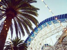 Disney Land Anaheim California  #fernweh #fernwehliebe #travel #traveller #travelblogger #travelingram #travelinspired #instatravel #instagood #wanderlust #love #explorer #adventure #reise #reiseblog #travelblog #disney #disneyland #anaheim #california #rollercoaster #palmtree #fairylights by fernweh_liebe