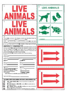 Animal sticker CS-345