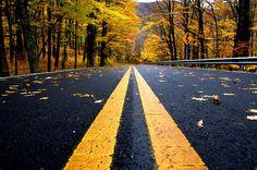 middle of the road    -Derek Slagle Photography