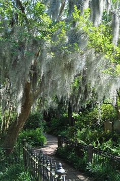 Audubon Historic Site in Louisiana - one of the most lovely and serene places in America