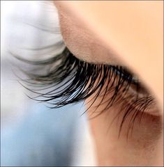 Ever Want Long Sexy Eyelashes? Here's How You Can Grow Your Own In As Little As One Week!#Makeup#Trusper#Tip