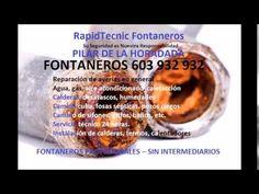 Fontaneros Pilar De La Horadada 603 932 932