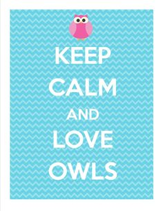3rd Grade's a Hoot blog.  Definately putting this in a cute frame for next year... I'm picturing a chunky white one... Hmmmm
