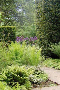Garden Views   Kiftsgate Court Gardens