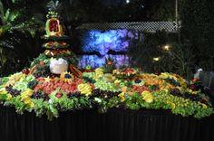Wedding Receptions Foods Displays   Free Fruit Display Promotion! « Heather's Glen Wedding Blog