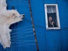 "Ciril Jazbec: ""A polar bear skin dries on a rack outside the home of Ane Løvstrøm on  Saattut Island. She's one of the few women in the community with the  skill to fashion boots and pants from the skin of the far north's  greatest predator. Hunters prize her garments, which provide  unparalleled warmth."" (from ""How Melting Ice Changes One County's Life,"" National Geographic)"