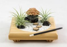 Miniature Zen Garden by Midnight Blossom - Made from Repurposed Pine, Featuring Living Air Plants and a Handmade Polymer Clay Hut