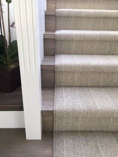 Wool carpet fabricated into a … – Wool stair runner Wool stair runner, Basement carpet, Ca. Carpet Stairs, Basement Carpet, Wool Stair Runner, Living Room Carpet, Wood Stairs, Staircase Design, Diy Carpet, Bedroom Carpet, Staircase