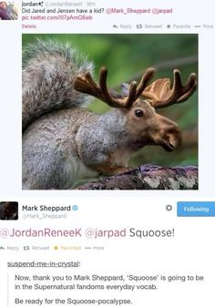Squoose! Thank you, Mark Sheppard hahaha jared and Jensen, well sam and dean had a kid :)